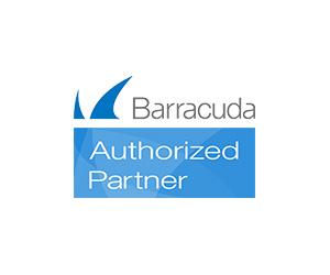 Barracuda Sinapsi Perugia